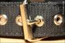 Ошейник нейлоновый с ручкой на пряжке